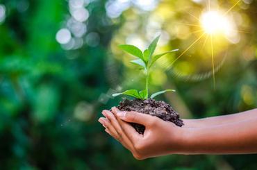 Die richtige Ernährung ist nicht nur für die Gesundheit wichtig, sondern auch für die Zukunft unseres Planeten. Darauf weist die aus 37 Experten bestehende Lancet-Kommission <span>EAT</span> in einem aktuellen Report hin und gibt Empfehlungen für eine nachhaltige Ernährung.
